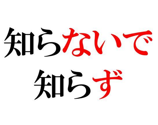 Japanese Grammar: ないで ず