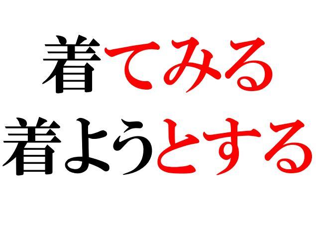 Japanese Grammar: てみる とする